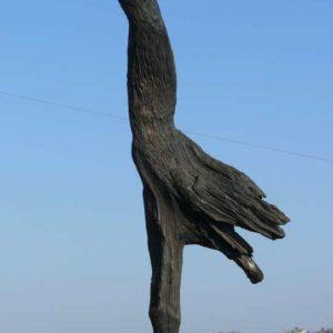 crane_l