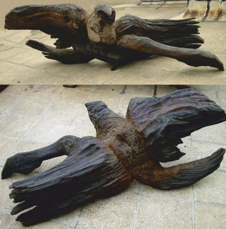 fallen-eagle_l